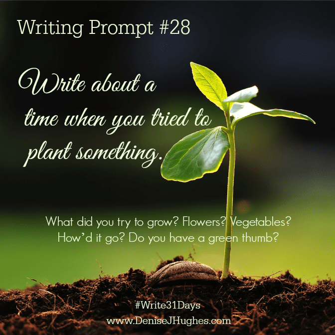 Writing Prompt 28