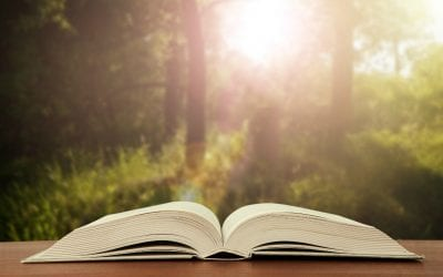 3 Bible Reading Plans to Choose From